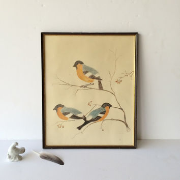 Vintage Original Drawing of Birds Pencil Drawing Midcentury Sketch of Three Birds on a Branch Vintage Art