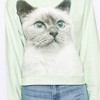 Monki Cat Sweatshirt at asos.com