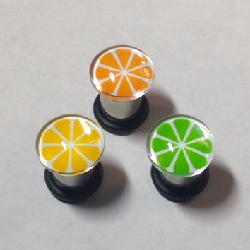 Citrus Fruit Picture Plugs & Earrings 14g-00g