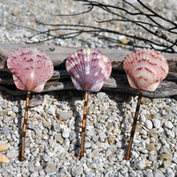 Set of 3 Small Calico Scallop Seashell Bobby Pins collected from Sanibel, FL- Beach Weddings, Mermaid Hair, Summer Beach Hair, Surfer Girl