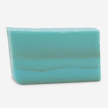 Primal Elements Dead Sea Mud 6 Oz. Bar Soap Aqua One Size For Women 27360024001