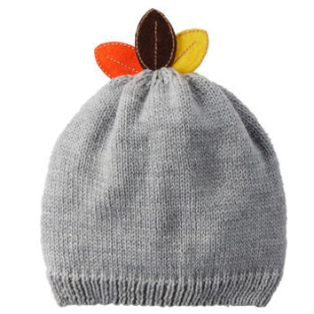 Carter's Thanksgiving Beanie