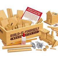 Build-It-Yourself Woodworking Kit at Toys to Grow On