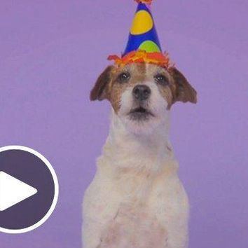 Amazon eGift Card - Woofy Birthday (Animated) [American Greetings]