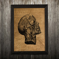 Anatomy print Human head poster Medical art Biology print BLP573