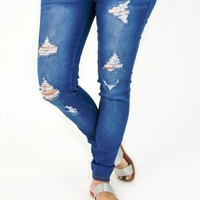 Sierra High Rise Distressed Jeggings