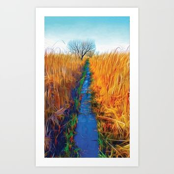 Wetland Boardwalk Art Print by Heidi Haakenson