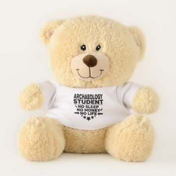 Archaeology Student No Life or Money Teddy Bear