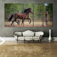 Horse Photography Canvas Print Wall Art / Western Horse Decor Giclee Fine Art Canvas Print Nature Photography Art Andalusian Horse Wall Art