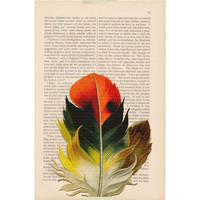 bird art print - Orange FEATHER - recycled book page print