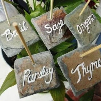 Garden markers  vegetable or herb tag labels