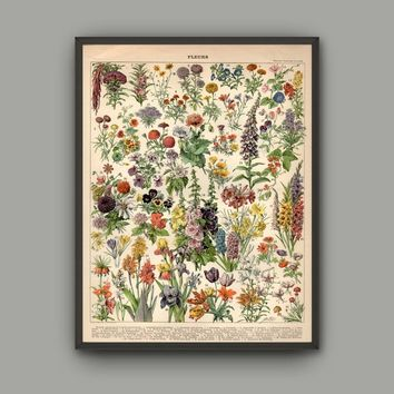 Not Framed Flower Print on Cavas Wall Art Pictures for Home Decor Lotus Floral Bedroom Decor Posters