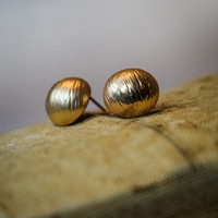 Shell Shape Earrings in Gold