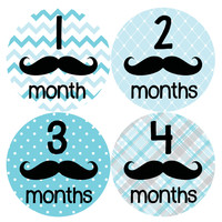 Baby Boy Monthly Milestone Stickers Style #160