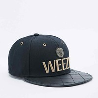 Cayler & Sons Goldie Snapback Cap in Black and Gold - Urban Outfitters