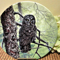 Owl Plate Limited Edition Great Grey by Jim Beaudoin Collector Porcelain Fine China blm