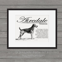 Airedale Terrier Storybook Style Canvas Print: Dog, Wall Art, Rustic, Vintage, Antique, Decor, Artwork, DIY, Breed, Gift, Pointer, Sporting