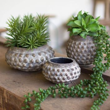 Dotted Ceramic Planters (Set of 3)