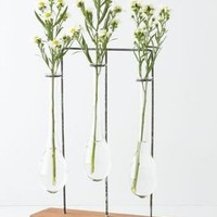 Horizontal Chemist Vase - Anthropologie.com
