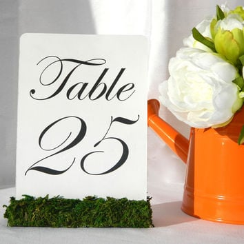 Moss Table Card Holders
