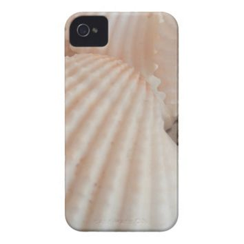 Sunny Summer Seashells. Romantic, Exotic Tropical iPhone 4 Cases