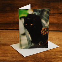 Billie Greeting Card by FairchildPhotography on Etsy
