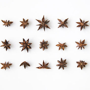 Star Anise Collection 8x10 Fine Art Photographic by MilesOfLight