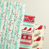 Snowbirds on a Branch Wrapping Paper Rolls, 3-Pack - World Market