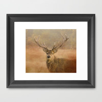Autumn Stag Framed Art Print by Linsey Williams