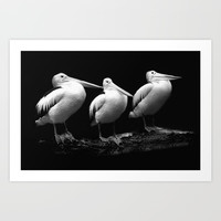 Pelican Trio black and white Art Print by Tanja Riedel