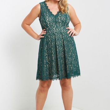 Lace Fit and Flare Dress Plus Size