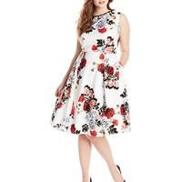 Adrianna Papell Women's Plus-Size Rose Print Classic Pleat Fit and Flare Dress