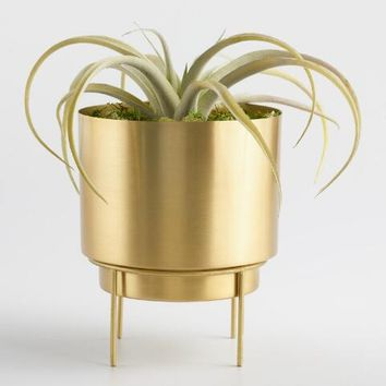 Brass Planter with Stand