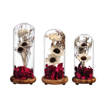 Crystal Seal Vase Dried Flowers Terrarium Home Decor Glass Terrariums Plant with Bamboo Bottom Micro Landscape Cover and Filler