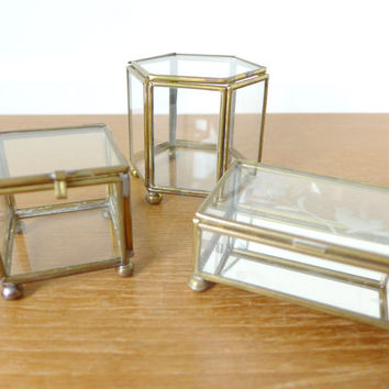 Set of three small brass and glass boxes for terrariums or display