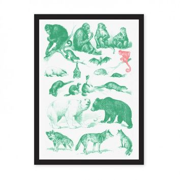 Collection of Mammals A3 Riso Print