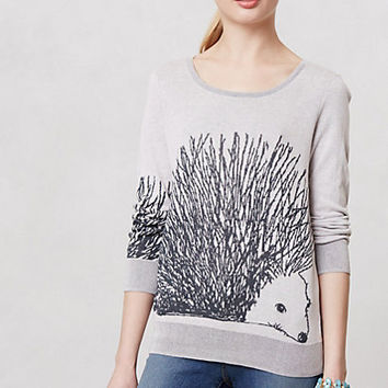Fluffed Hedgie Pullover