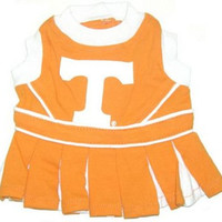 Tennessee Cheerleader Dog Dress