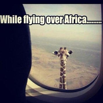 weheartit while flying over africa - Google Search