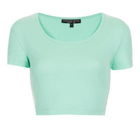 Petite Basic Crop Tee - New In This Week  - New In