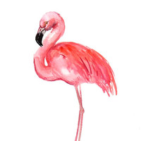 Flamingo, Original watercolor painting, 12 X 9 in, pink white wall art, flamingo paining, flamingo lover art