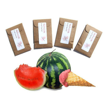 Home Fragrance Sachets 4 in Watermelon Sherbet Scent - Summer Picnic Wedding DIY Party Favors - Red Green Kraft Brown - Rustic Minimalist