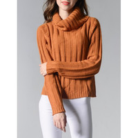 Turtleneck Long Sleeve Solid Color Sweater