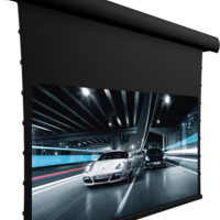 "Screen Innovations 5 Series 5TMFL125PG 125"" Fixed Projector Screen - Pure Gray .85"