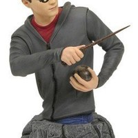 Harry Potter: Order of the Phoenix Year 5 Harry Bust