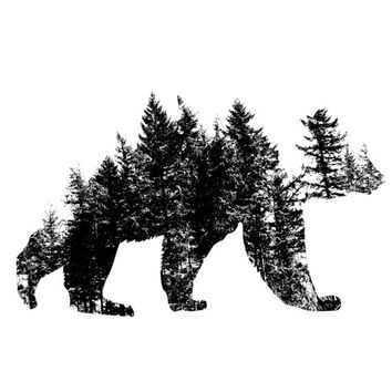 Pacific Northwest Bear Car Decal