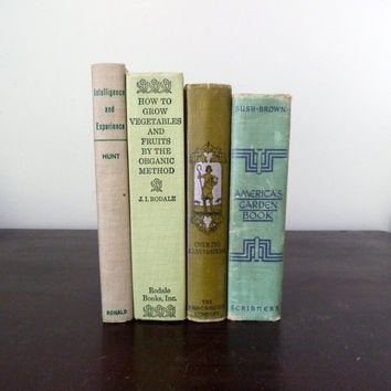 Antique Green Gray Book Collection - Vintage Decorative Book Decor