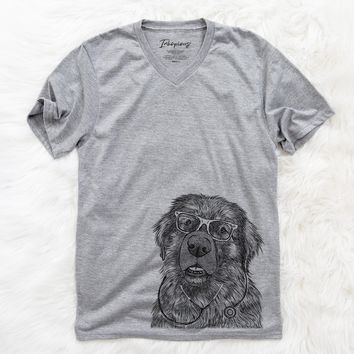 Ralph the Leonberger  - Medical Collection