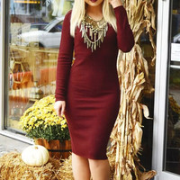 Red Wine V Neck Long Sleeve Bodycon Knitted Dress