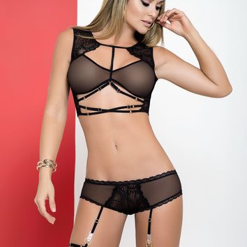 Sheer Garter Lingerie Set